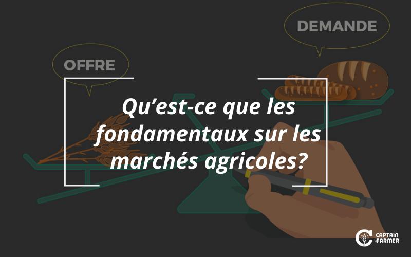 Les fondamentaux sur les marchés agricoles, qu'est-ce que c'est?