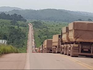 queue de camions au Brésil